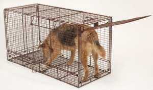 Tru Catch Live Folding Animal Trap 48F