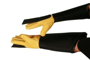 ACESRabiesglove