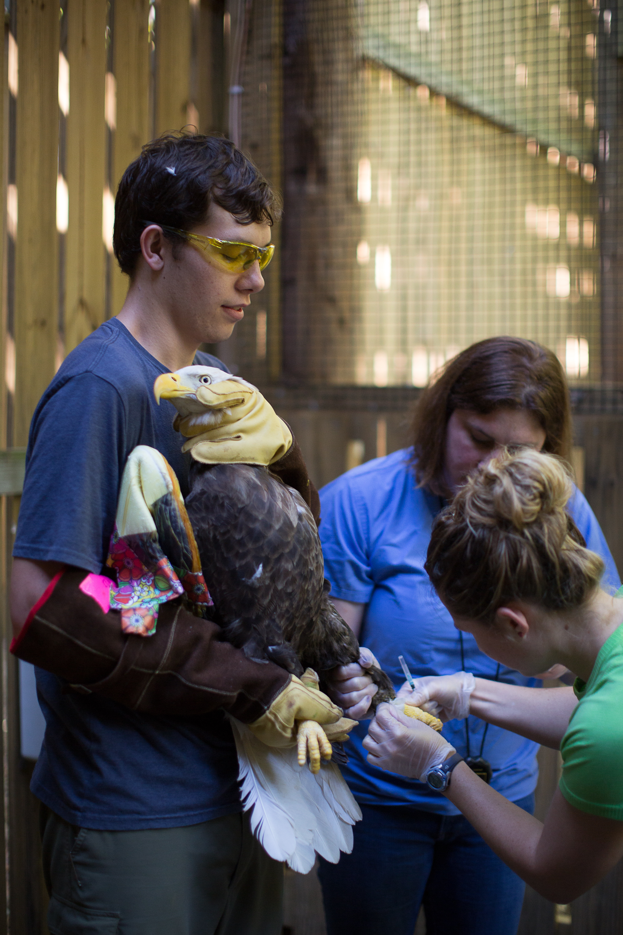Animal Handling Gauntlet Gloves Animal Care Equipment