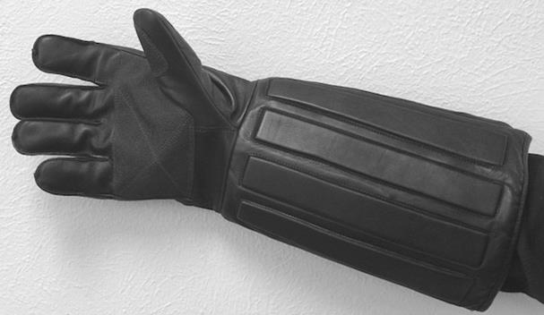 Bite Protection Glove