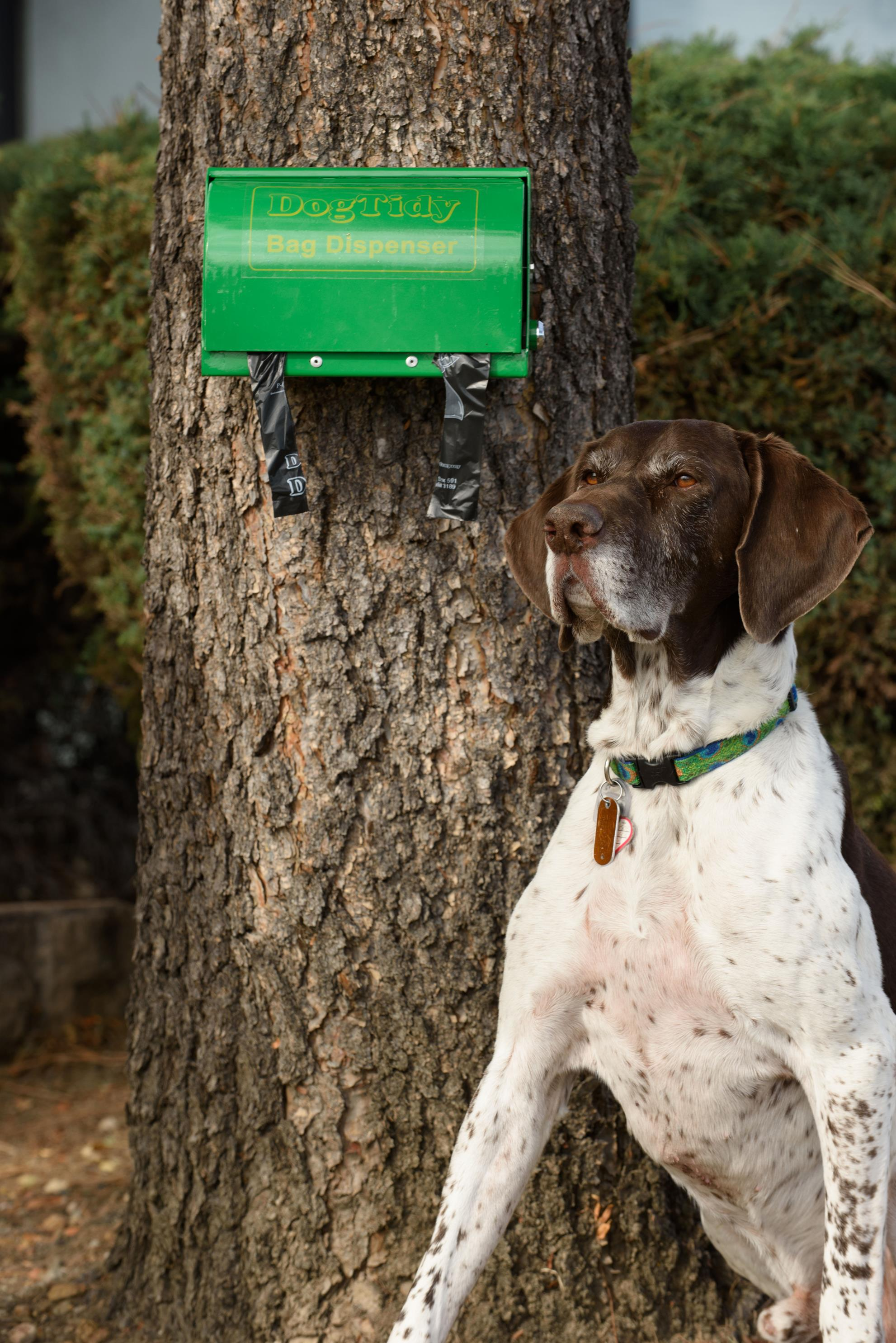 Dog Tidy Bag Dispenser