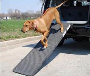 Folding Pet Step