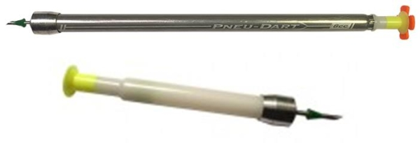 Type P Darts