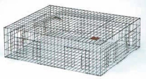 Pigeon Live Animal Trap